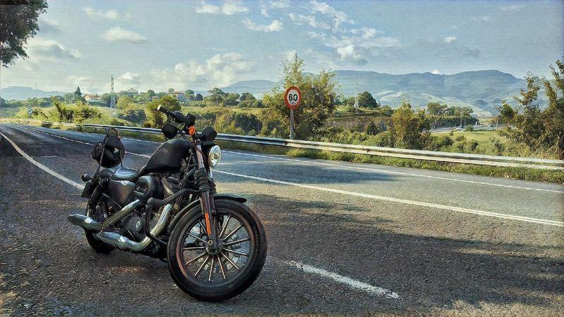 Harley Davidson Sportster Iron Transportation Road Mode Of Transportation Tree Land Vehicle Bicycle Plant