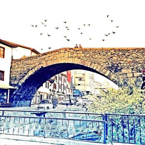 Niksar Bridge Historical Building