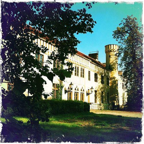 #petzow #schloss #schlosspark #brandenburg #ausflug #park #sonne #germany