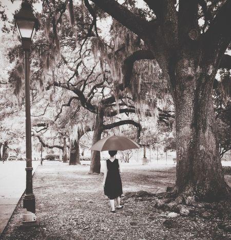 Savannah Georgia Vintage Fashion Vintage Style Belle Southern Life Southern Charm Sweet Moments UmbrellaGirl Umbrella Revolution Love Walking Alone... Walk In The Park Mossy Oaks South Georgia Film Photography
