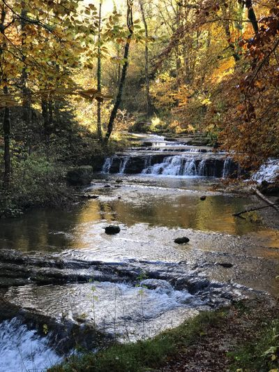 Cascade Du Herisson Nature Tree Forest Water Beauty In Nature Scenics Non-urban Scene Outdoors Tranquil Scene Tranquility No People Day River Stream - Flowing Water Waterfall