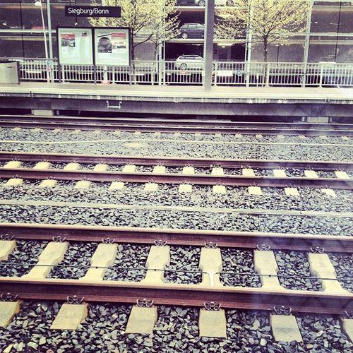 On Track IGDaily Ignrw Bahn db