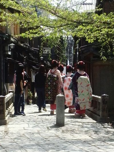 Japan Maikosan On The Road
