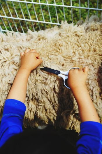 Sheep🐑 Childhood Human Body Part Day Leisure Activity Lifestyles Outdoors Close-up EyeEm Best Shots Nature Animals🐾 Top Viev