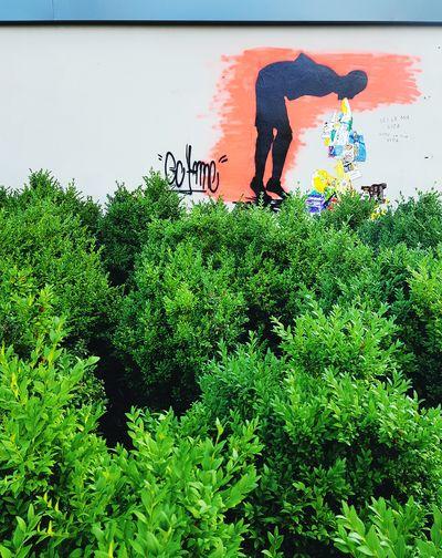 Urban Streetphotography Street Art Graffiti Vandalism Art Spray Paint