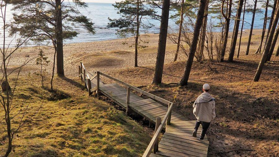 Rear view of man standing on boardwalk leading towards beach