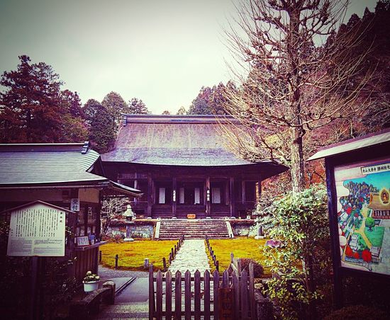 勝林院 大原 京都 寺社仏閣 Kyoto 問答寺 Relaxing