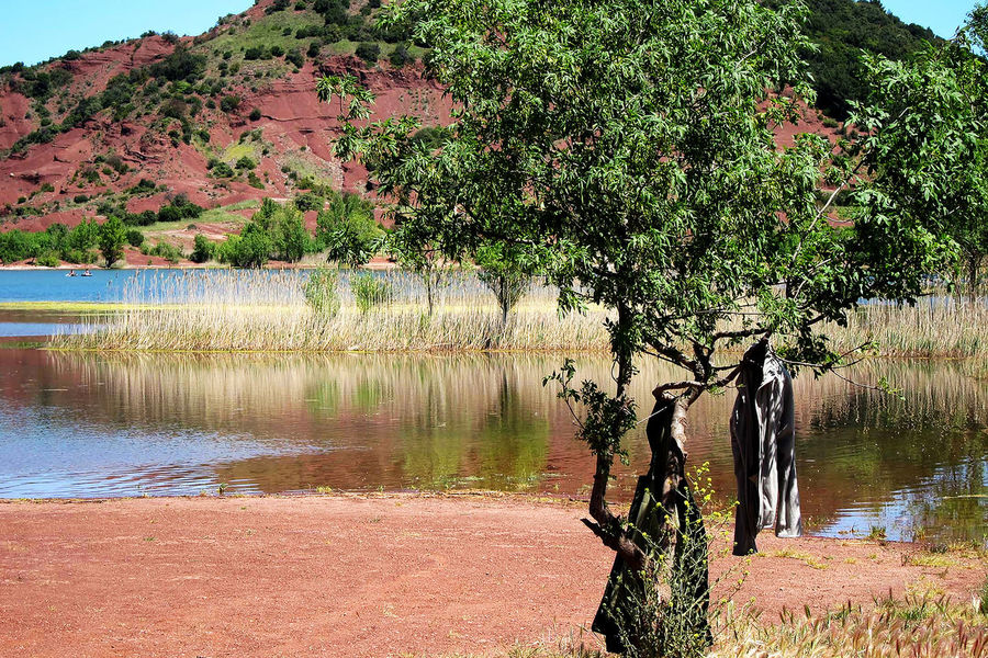 Salagou Lake Salagou Lake Tree Beauty In Nature Clothes Hanging Out To Dry Day Lake View No People Outdoors Red Soil Tranquility Water