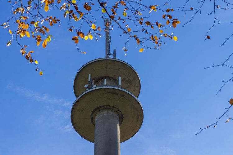 Broadcasting tower in autumn Sky Low Angle View Blue Tree Nature Built Structure Clear Sky Day Building Exterior Street Light Sunlight Autumn Tower No People Lighting Equipment Outdoors