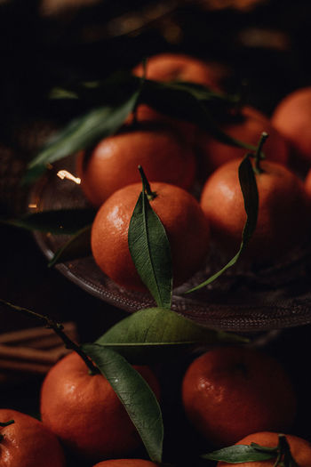 Close-up of orange fruits on leaves