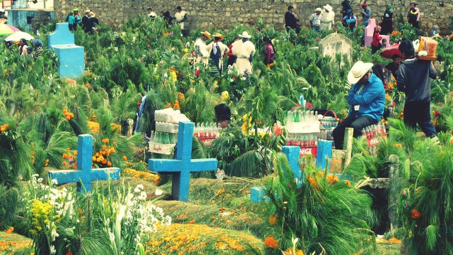 Mexico Maya Chamula Chiapas, México Men Person Culture Etnography Cemetery Cross Blue And Green People And Places