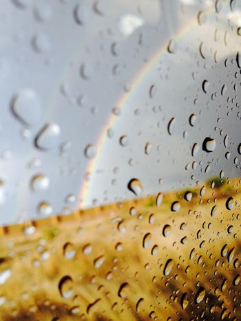 Raynbow Rain Drops Enjoying The Sun Paisaje Natural