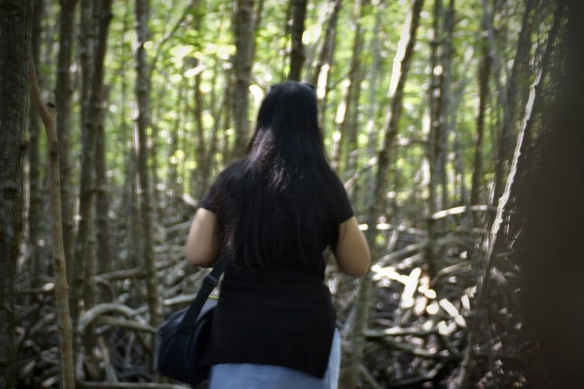 Rear View Forest Tree One Person Three Quarter Length One Woman Only Only Women Adults Only Adult People Nature WoodLand Women Tree Trunk Outdoors Day Young Adult Tree Area Back Mashed Potatoes Thailand Photos EyeEm Thailand Travel Thailand One Young Woman Only