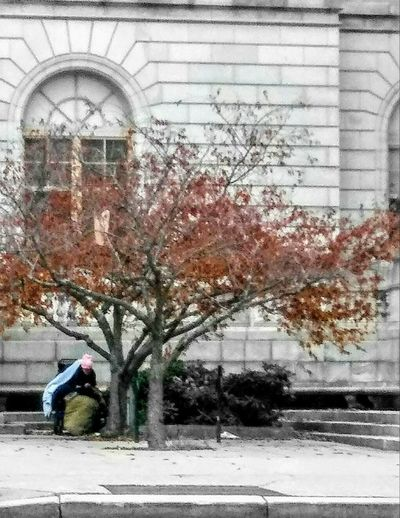 Home ~ Real People Architecture One Person Men Day Built Structure Building Exterior Outdoors Adult People Full Length Tree Lifestyles Homelessness  Hope For A Better Future Citylife My Point Of View Needs Hard Times in Portland Maine, USA