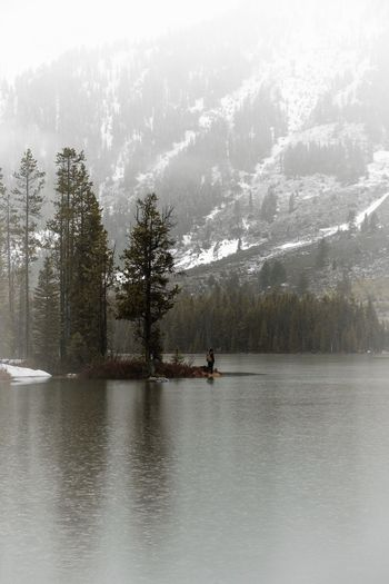 Nature Tree Beauty In Nature Mountain Scenics Tranquility Tranquil Scene Water Lake Day Outdoors Waterfront Real People Sky Transportation Fog Cold Temperature Nautical Vessel Men One Person