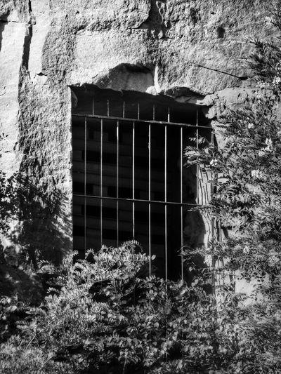 caged EyeEm Best Shots - Black + White Bw_collection Blackandwhite Monochrome