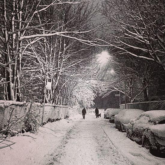 Snowstorm Streetphotography