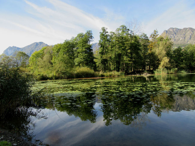 Beauty In Nature Cloud - Sky Day Green Color Harmony Laghetto Del Piano Lake Landscape Montains    Nature No People Outdoors Reflection Reflection Lake Scenics Sky Tree Trees Water