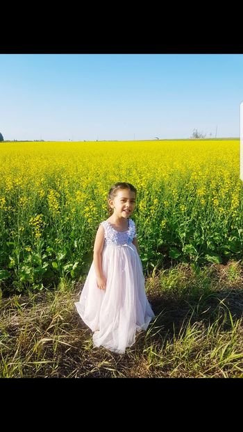 Child Cereal Plant Blond Hair Rural Scene Childhood Girls Agriculture Standing Yellow Field