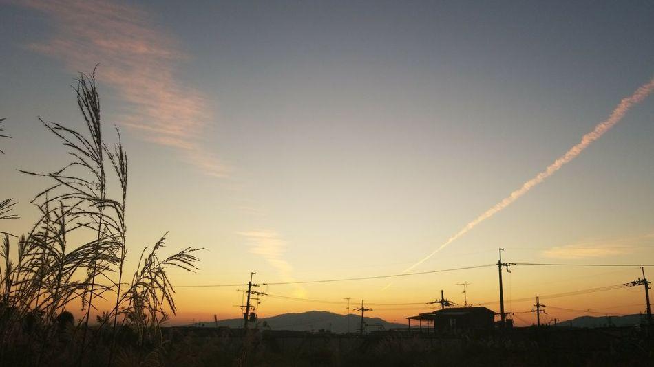 夕方 夕焼け 空 Sky Sunset