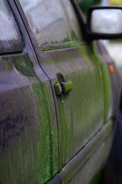 Mirror Rust VW Vw Golf MK3 Car Car Door Car Door Handle Close-up Day Door Glass Glass - Material Green Color Land Vehicle Moss No People Outdoors Rusty Transportation Window