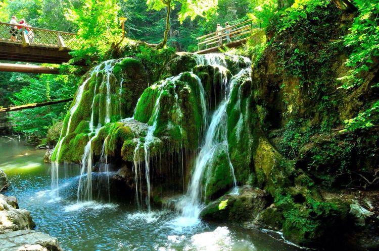 Cascade Green Nature Bigar