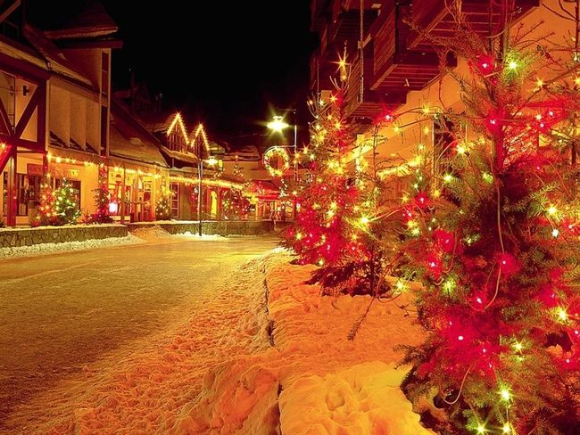 Christmas Snow ❄❄❄❄⛄