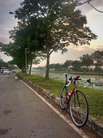 ColnagoC40 SaigonCycling SuriJitjang VietnamCycling Twowheels HappyBike