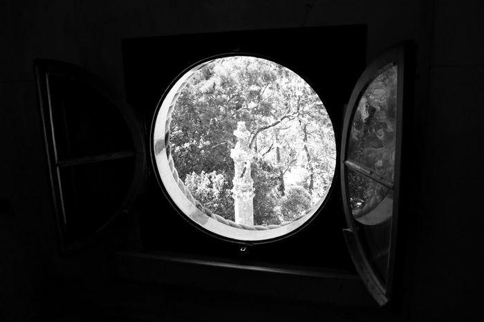 Black & White Black And White Blackandwhite Blackandwhite Photography Bnw Circular Window Eye4photography  EyeEm Best Shots EyeEmBestPics Lookin Out The Window Minimal Minimalism Minimalobsession Trees Window