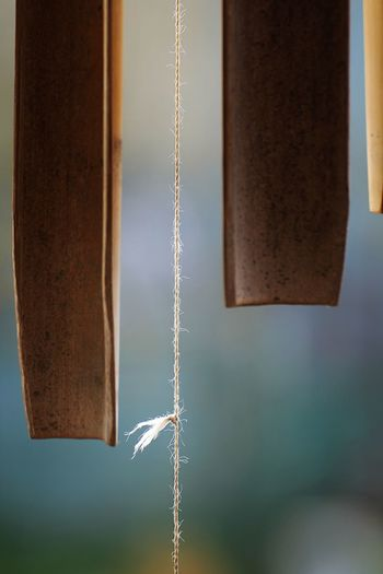 Close-up of metal hanging against wall