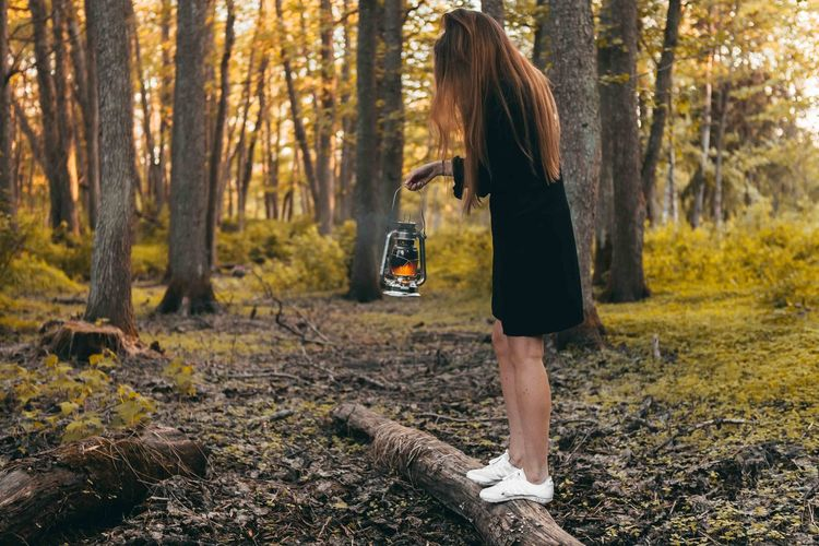 Girl staying at the forest with oil lamp. Mystic atmosphere Adult Change Day Forest Full Length Hair Hairstyle Land Leisure Activity Lifestyles Nature One Person Outdoors Plant Real People Standing Tree Tree Trunk Trunk Women WoodLand Young Adult Young Women