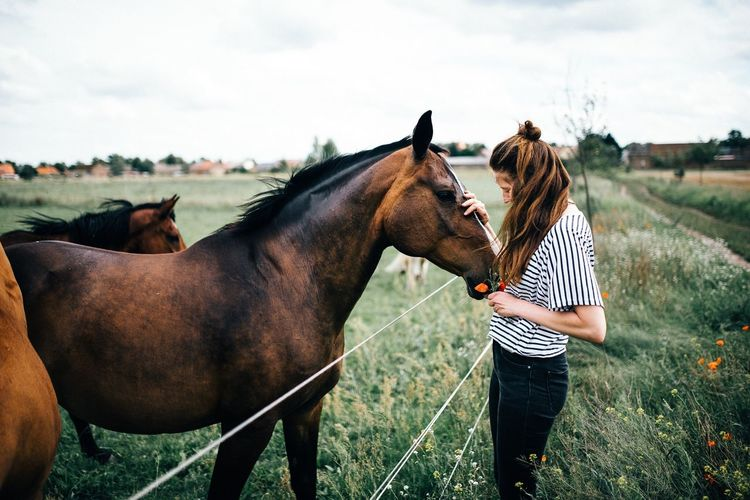 Woman touching horse while standing on grassy field