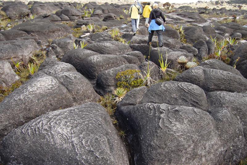 Rear view of friends walking on rocks