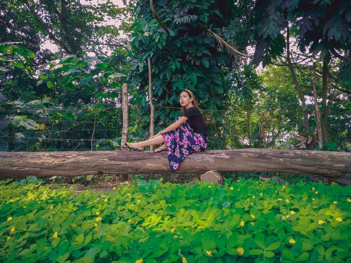 Young Woman Sitting On Log Amidst Trees And Plants