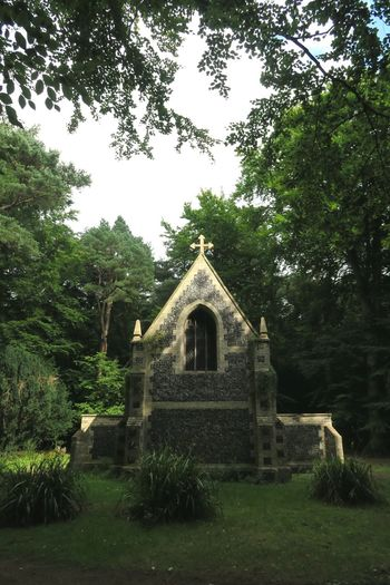 WaterBuilt Structure No People Building Exterior Outdoors Sky Day Tranquil Scene Norfolk Thetford Forest Thetford Tree Trunk Tranquility Beauty In Nature Forest Mausoleums Branch Leaf Nature Growth Green Color Tree Architecture Walking Tree