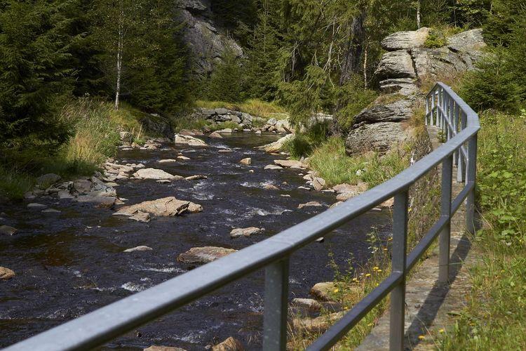 Schwarzwassertal