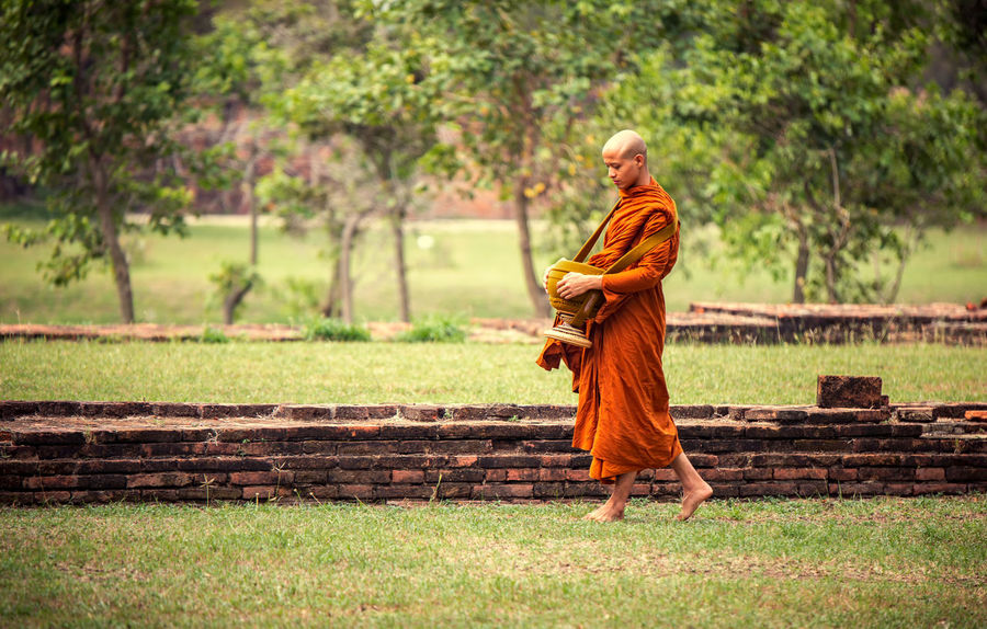 Belief Buddhism Clothing Day Focus On Foreground Full Length Grass Monk  Nature One Person Outdoors Plant Real People Rear View Religion Religion And Beliefs Robe Spirituality Thaland Traditional Clothing Tree Walking