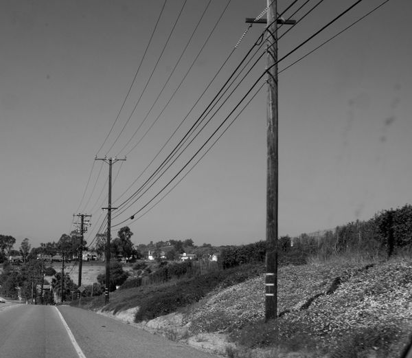 Black & White Blackandwhite Cable Clear Sky Day Electric Pole Electricity  Electricity Pylon Electricity Tower Fuel And Power Generation Monochrome Moorpark Nature No People Outdoors Power Line  Power Supply Road Sky Technology Telephone Line Telephone Pole Transportation Tree Vintage