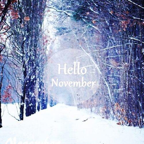Hello November Landscape Snow Cold Days