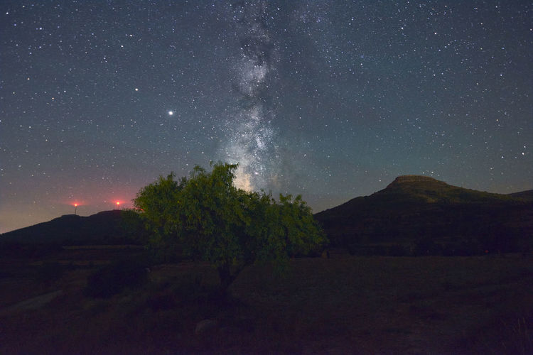 Milky way above a tree, night photography, long exposure