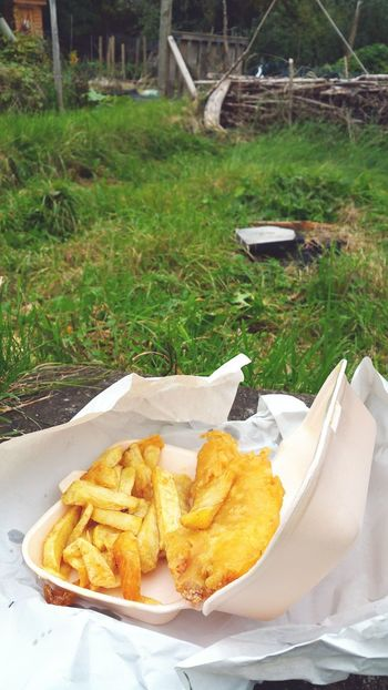 Fish And Chips... Allotment Garden Chips Lunch Picknick Time No People Food And Drink Grass Outdoors Food Day Freshness Ready-to-eat Fast Food Snacking Yellow Paint The Town Yellow Britain British Uk Gardening Adventures Wales Traditional Food