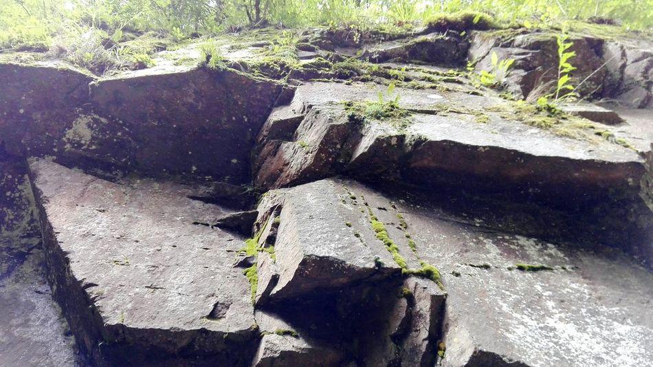Punti Di Vista👀guardando da Giù In Sù Rocce Montagna Muschio