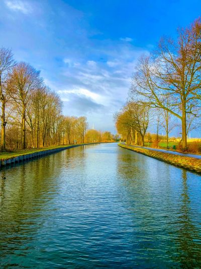 Blue sky on a winters day over the river or canal with a line of trees next to it Water Tree Plant Sky Beauty In Nature Scenics - Nature Tranquility Tranquil Scene Reflection Cloud - Sky Nature No People Lake Day Waterfront Rippled Growth Idyllic Outdoors