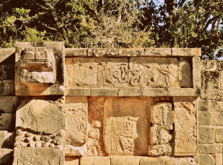 Sunlight No People Day Outdoors Variation Full Frame Tree Close-up Quintana Roo Mexico Archeological Complex Nature Chichen Itza Hot Day Relief Sculpture