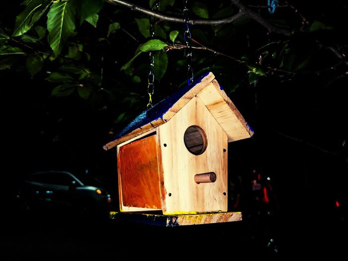 pretty house for pretty birds Manhattan New York City Life Citylife Ilovephotography NYC NYC Street Photography NYC Photography Peace Photography Pixel Pixel2xl New York Art Nature Natural Beauty Peace And Quiet Peace Of Mind Inspirational Cityneversleeps Black Background Tree Old-fashioned Close-up Birdhouse Civilization Model - Object Architectural Model