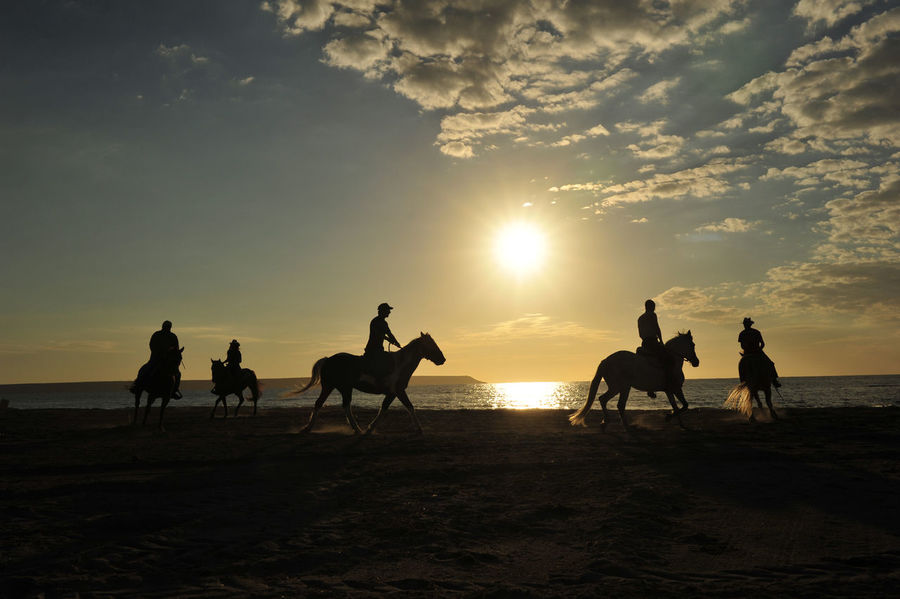 Horse Love EyeEm Nature Lover EyeEm Selects EyeEmBestEdits EymEm New On Market EyeEm Best Shots - Nature Nature Sky Outdoors Landscape Water Animal Themes Real People People Sea Sunrise_sunsets_aroundworld Horseman Horselovers Connected By Travel