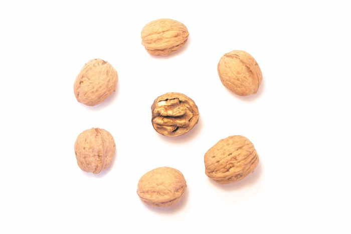 White Background Studio Shot Studio Close-up Food No People Nuts Nut Nutrition Walnuts Vitality Vitamins Energetic Ordered Circle Exceptional Photographs Personal Perspective Walnut Hazelnuts Healthy Eating Healthy Lifestyle Healthy Food Healthy Dried Fruit Natural