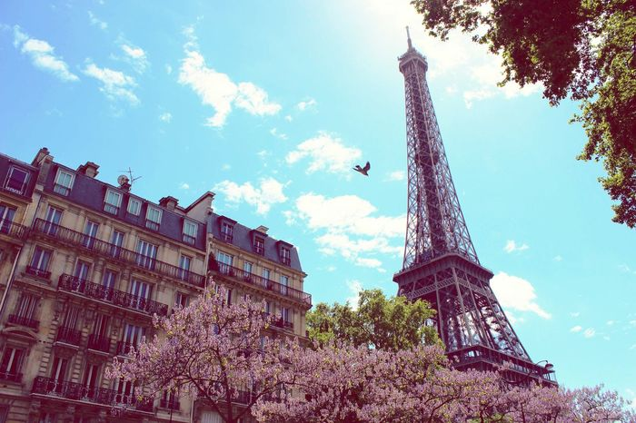 Paris ❤ Love Pictures Harmony Romantic Citysights Travel Neverstopexploring  Wanderlust Travel Photography Nature_collection City LoveParis