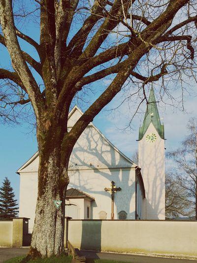 Kirche und Ein Baum in Kleinweiler Church and Tree