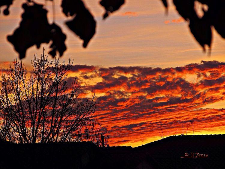 California Delta sunset No. 3 Sunset California Delta